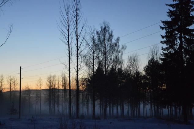 Nu har det frusit på igen och isen sjunger.